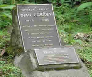 dian fossey tomb